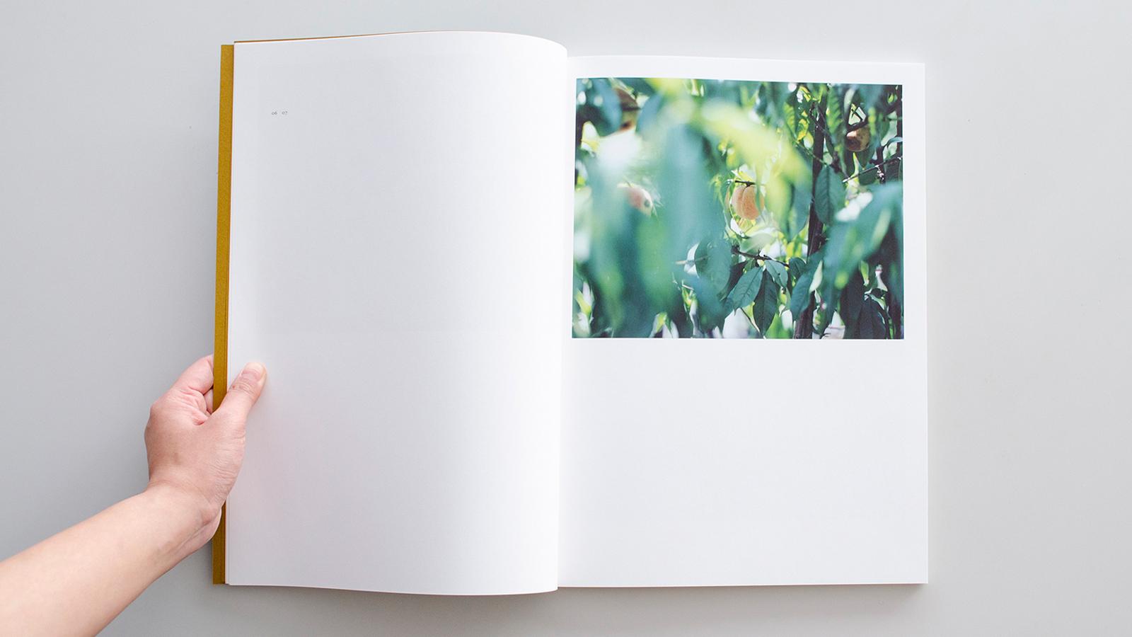 鈴木理策 私の秘密の花 ―西沢立衛のガーデン&ハウス|True Ring